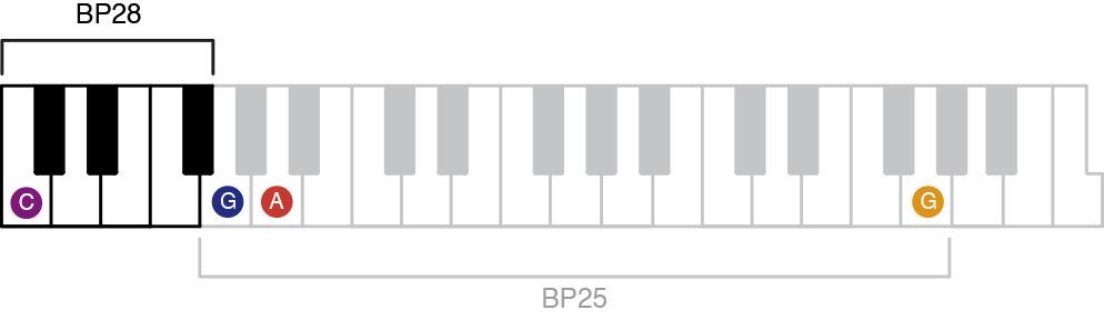Belleplates BP28 Scale